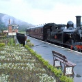 Carrog Railway Station Steam Train